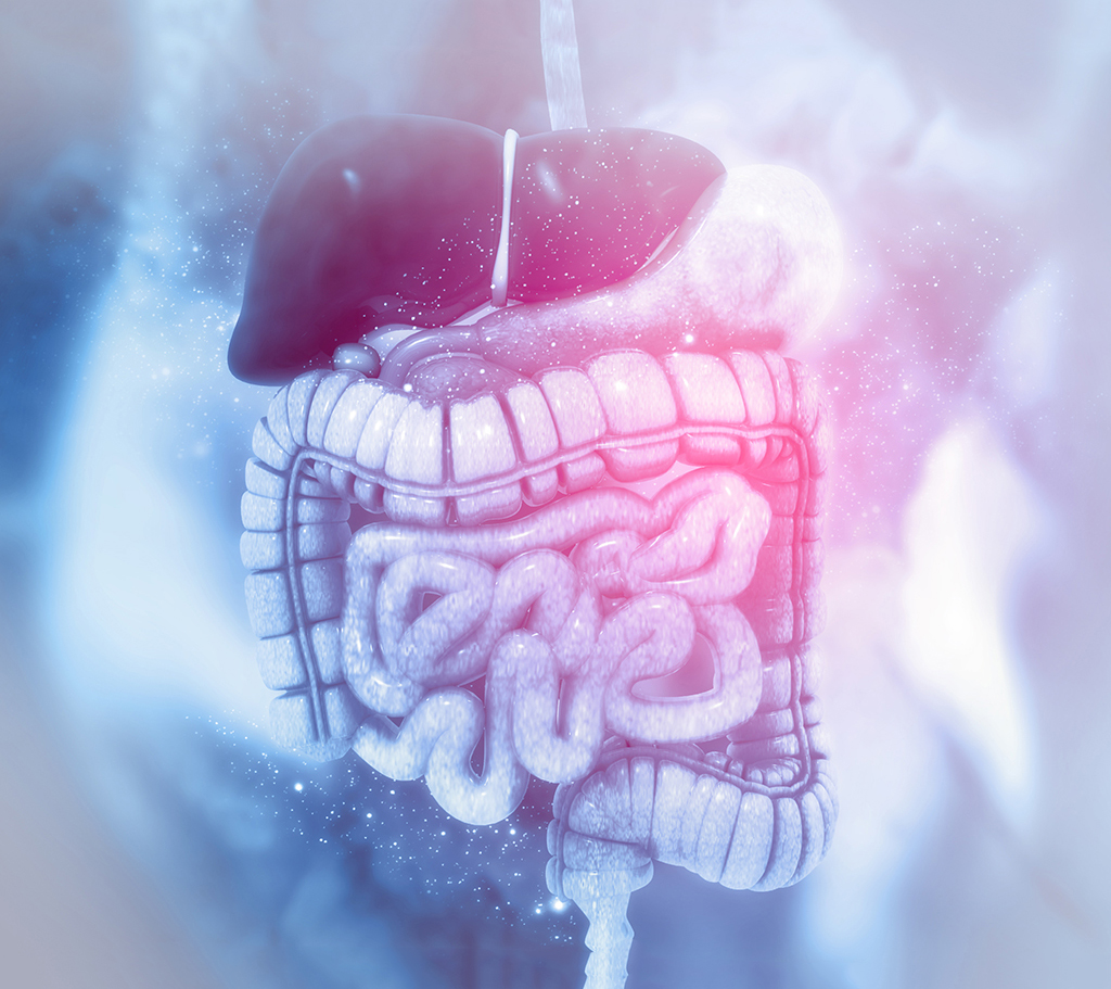 Mental health, immune function & the role of the gut