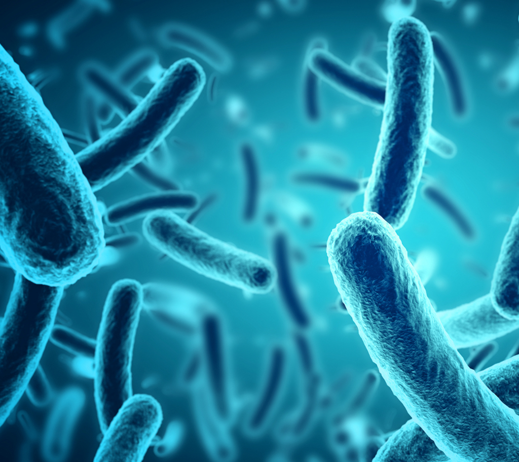 Eight key learnings from The Gut Microbiome and the Immune System – Part One